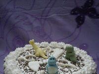 Dionis torta